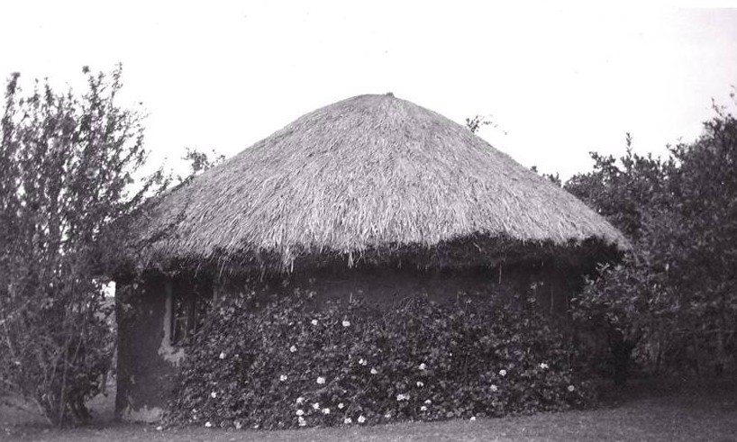The first building at Kahangi Estate c1925