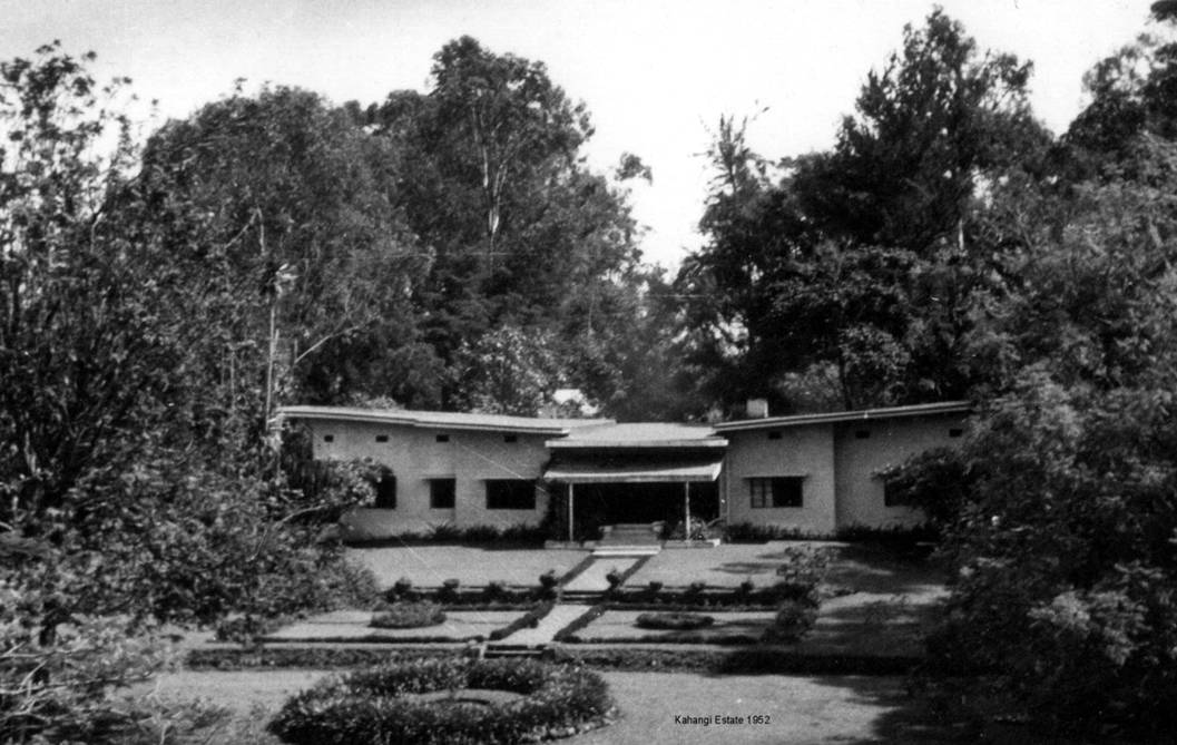 Kahangi Estate 1951