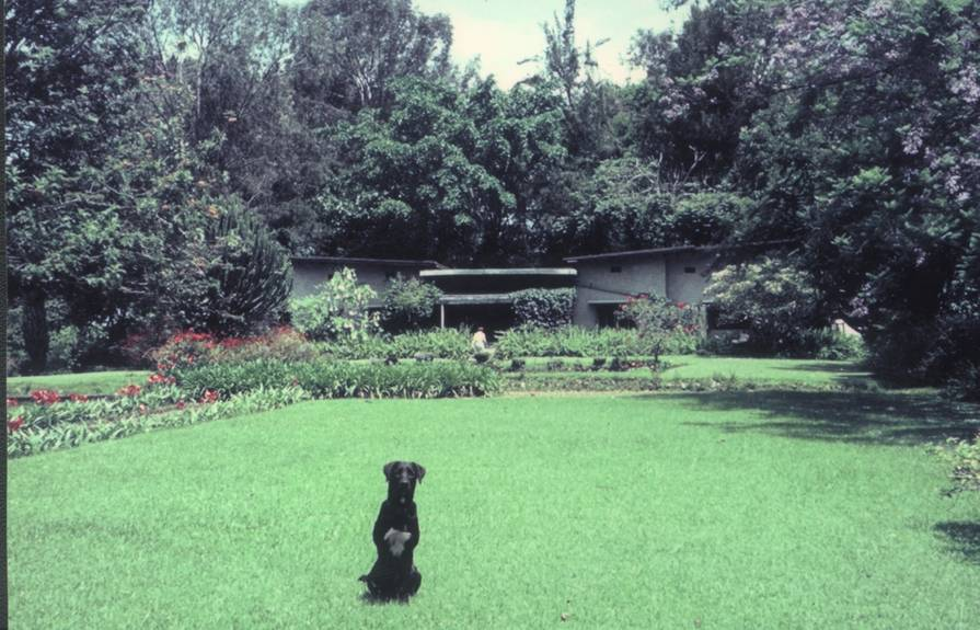 House & Grounds in its 1960s heydays