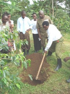 Practical Training in Sustainable Agriculture at Kahangi Estate